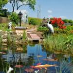 Der Artikel gibt Tipps zum Anlegen eines Gartenteichs.