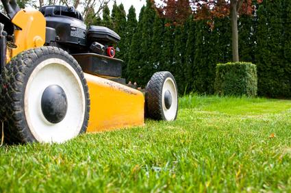 Tipps zum Vertikutieren, Düngen und Mähen – Rasenpflege im Frühling