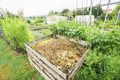 Einen Komposthaufen im Garten anlegen – so geht es