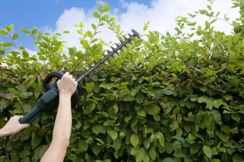 Gartenunfälle vermeiden!