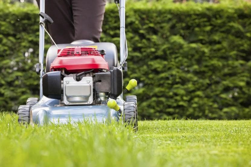 Grün, weich, kräftig – So geht Rasenpflege im Sommer