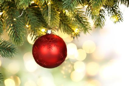 Tipps für die Tanne: So bleibt der Weihnachtsbaum lange frisch