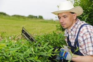 Das Gärtnerhandwerk