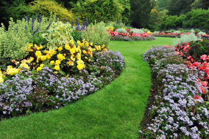 Tipps für den heimischen Garten