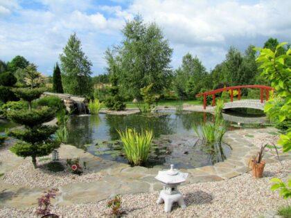 Einen idyllischen Gartenteich selber anlegen